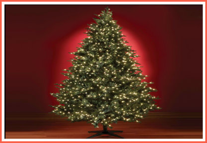 the-first-christmas-tree-in-the-Philippines